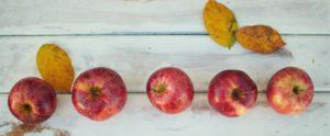 秋とりんご